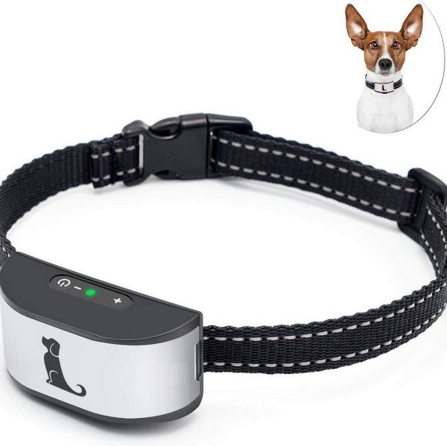 What to Do When Purchasing a Dog Bark Collar